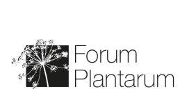 Kunde: FORUM PLANTARUM Gartenarbeiten, CH-Zürich _ _ _ Jahr: 2016 _ _ _ Umfang: Logo, Briefschaften, Inserate, Dokumentationen, Website