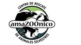 Kunde: AMAZOONICO Tierauffangstelle im Amazonas Regenwald, EC-Ahuano _ _ _ Jahr: 2018 _ _ _ Umfang: Logo