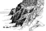 Projekt: Madeira Küste Kunde: Privat Umfang: Illu in Tinte _ 180x180 mm